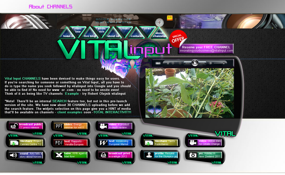 Vital Input - Helps YOU get a Web presence that REALLY works